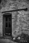 doors, Jeff Harold