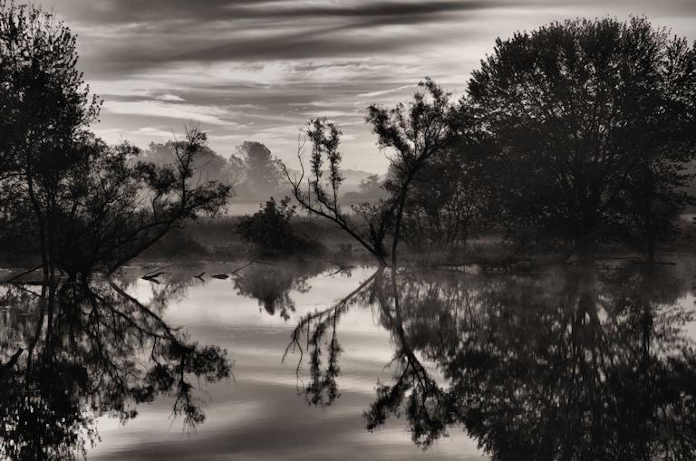 dawn, sunrise primordial, Jeff Harold