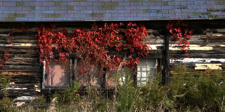 barns, autumn, Jeff Harold